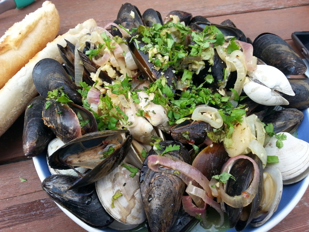 mussles and clams